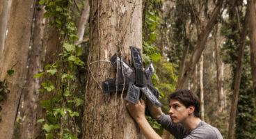 Amazónia, deflorestação, Google, Rainforest Connection, smartphone