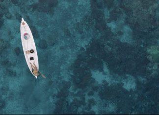 cinema destaca proteção do oceano